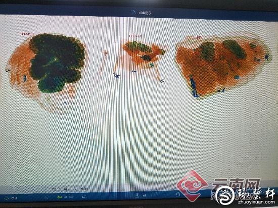 腾冲海关查获一批未申报的玉石琥珀